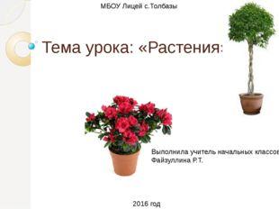 Тема урока: «Растения» Выполнила учитель начальных классов Файзуллина Р.Т. МБ