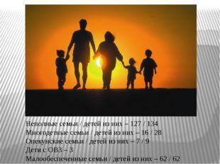 Неполные семьи / детей из них – 127 / 134 Многодетные семьи / детей из них –