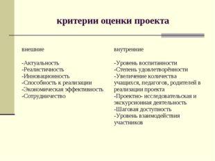 критерии оценки проекта внешниевнутренние -Актуальность -Реалистичность -Инн