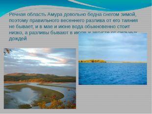 Речная область Амура довольно бедна снегом зимой, поэтому правильного весенне