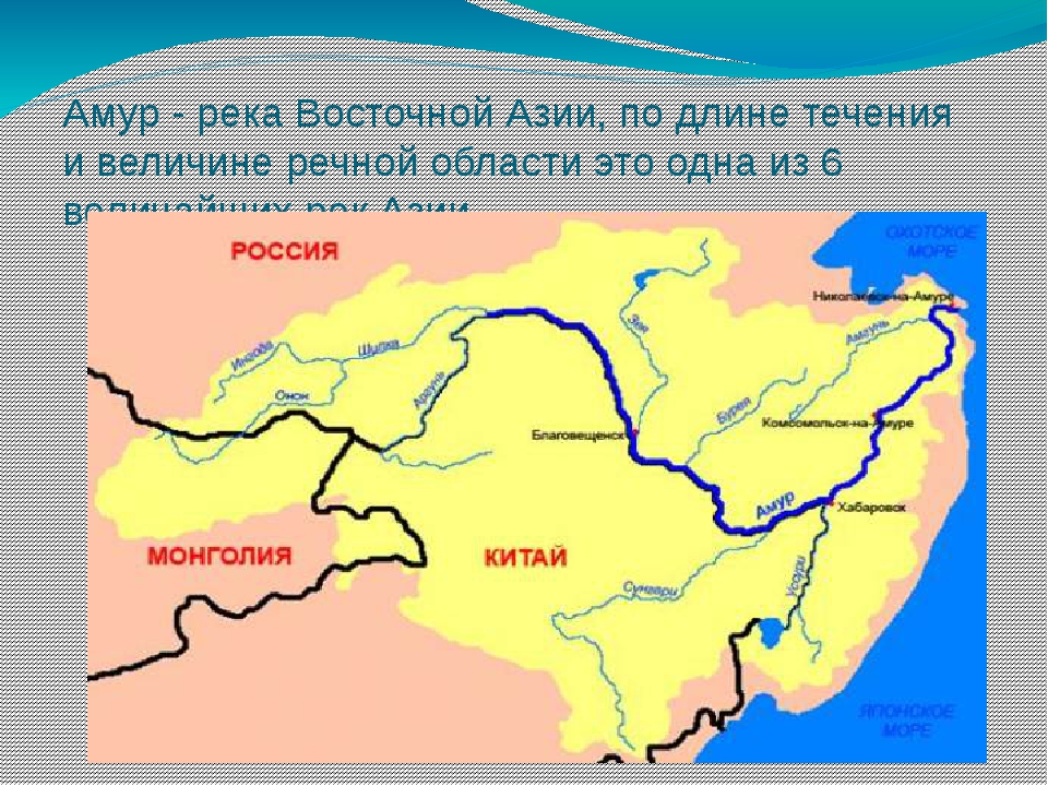 Амур - река Восточной Азии, по длине течения и величине речной области это од...