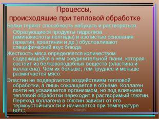 * S.Sargin * Процессы, происходящие при тепловой обработке Белки теряют спосо