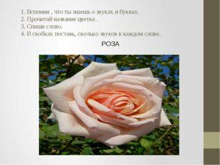 1. Вспомни , что ты знаешь о звуках и буквах. 2. Прочитай название цветка .