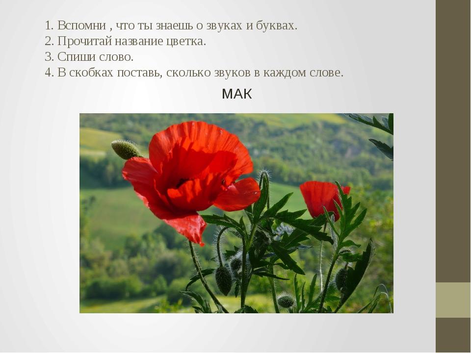 1. Вспомни , что ты знаешь о звуках и буквах. 2. Прочитай название цветка. 3...