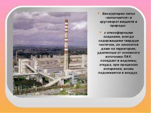 Бенз(а)пирен легко «включается» в круговорот веществ в природе: с атмосферны
