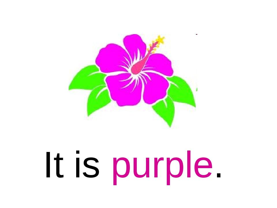 It is purple.