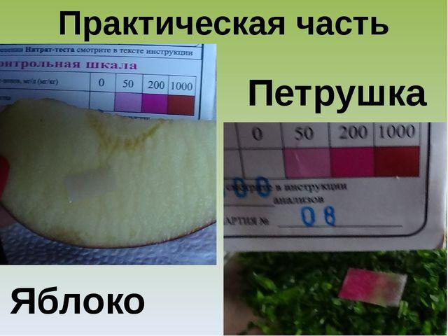 Практическая часть Яблоко Петрушка
