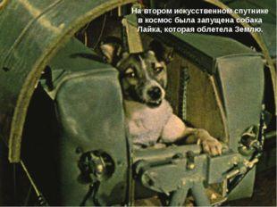 На втором искусственном спутнике в космос была запущена собака Лайка, которая