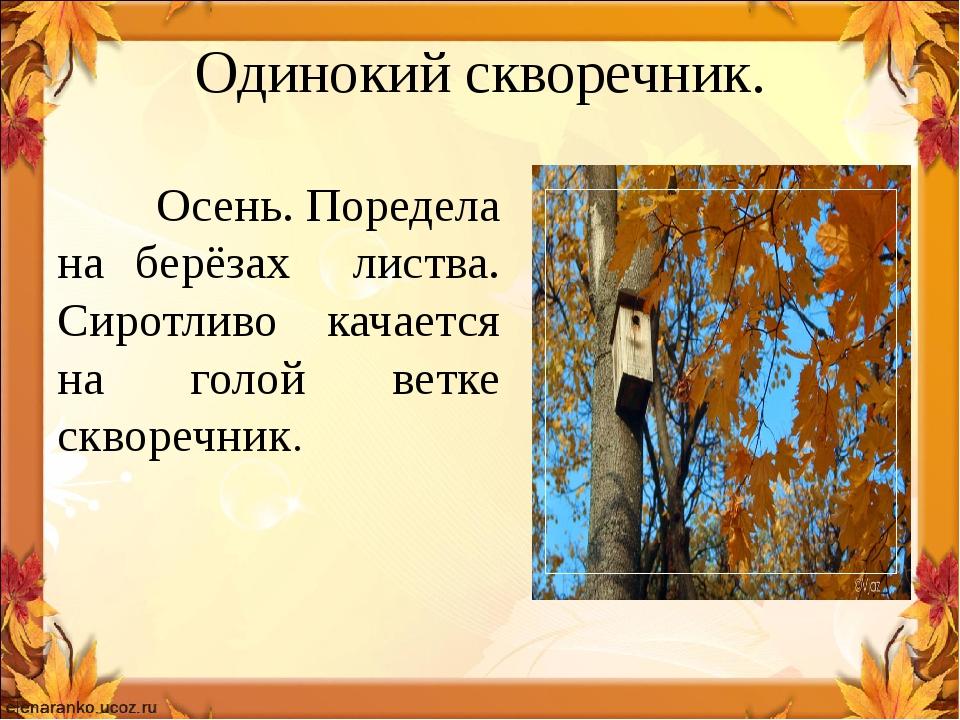 Одинокий скворечник. Осень. Поредела на берёзах листва. Сиротливо качается на...