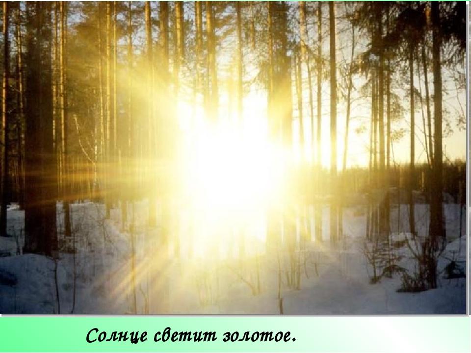 Солнце светит золотое.