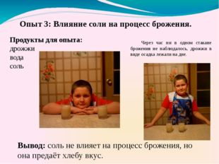 Продукты для опыта: дрожжи вода соль Вывод: соль не влияет на процесс брожени