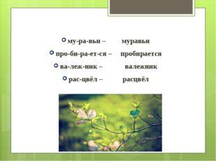 му-ра-вьи – муравьи про-би-ра-ет-ся – пробирается ва-леж-ник – валежник