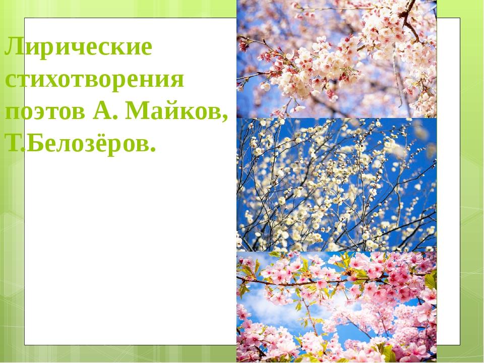 Лирические стихотворения поэтов А. Майков, Т.Белозёров.