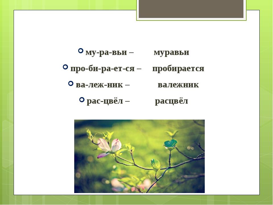 му-ра-вьи – муравьи про-би-ра-ет-ся – пробирается ва-леж-ник – валежник...