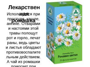 Лекарственная ромашка Используется при простуде, кашле, ангине. Отварами и на