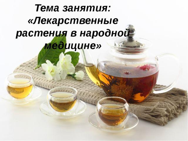 Тема занятия: «Лекарственные растения в народной медицине»