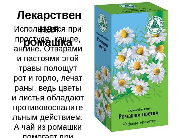 Лекарственная ромашка Используется при простуде, кашле, ангине. Отварами и на...