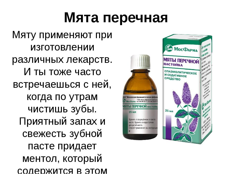 Мята перечная Мяту применяют при изготовлении различных лекарств. И ты тоже ч...