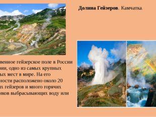 Долина Гейзеров. Камчатка. Единственное гейзерское поле в России и Евразии, о