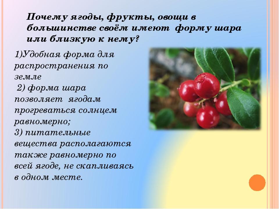 1)Удобная форма для распространения по земле 2) форма шара позволяет ягодам п...