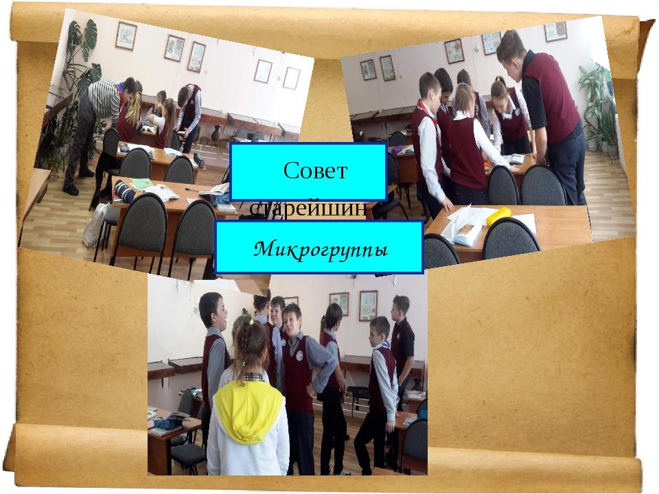 Совет старейшин Микрогруппы