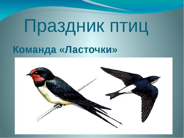 Праздник птиц Команда «Ласточки» «