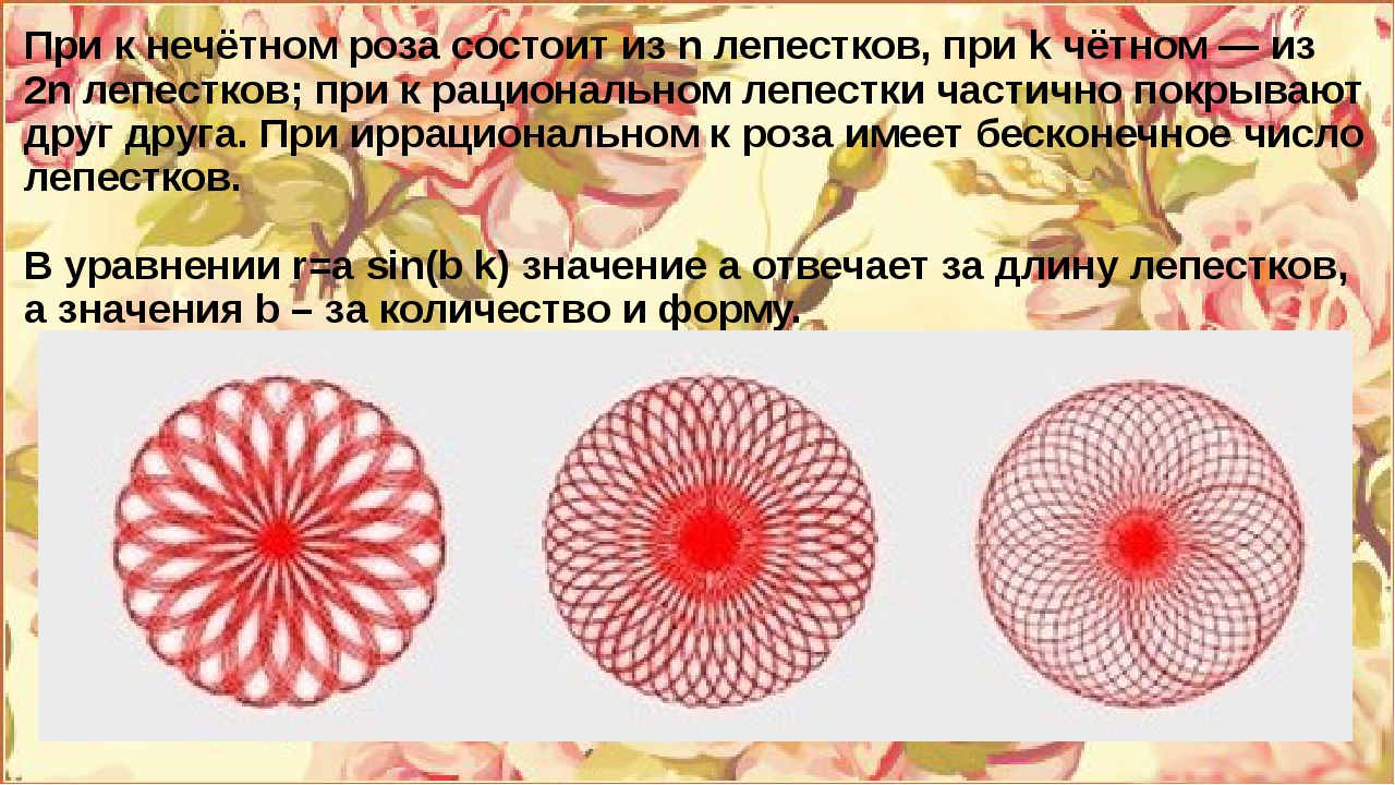 При к нечётном роза состоит из n лепестков, при k чётном — из 2n лепестков; п...