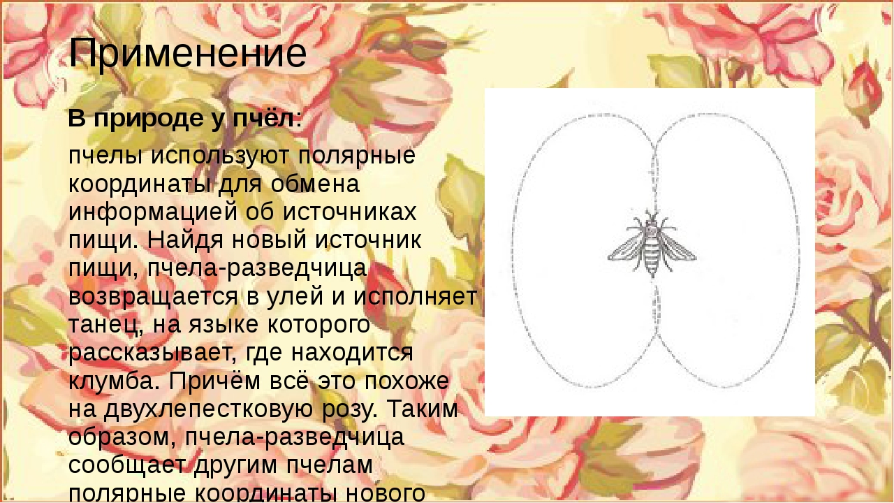 Применение В природе у пчёл: пчелы используют полярные координаты для обмена...