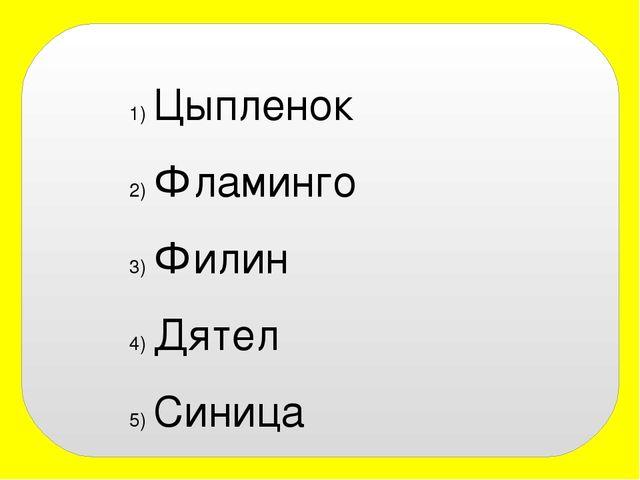 Цыпленок Фламинго Филин Дятел Синица