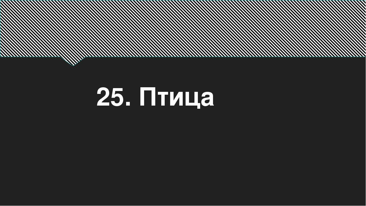 25. Птица