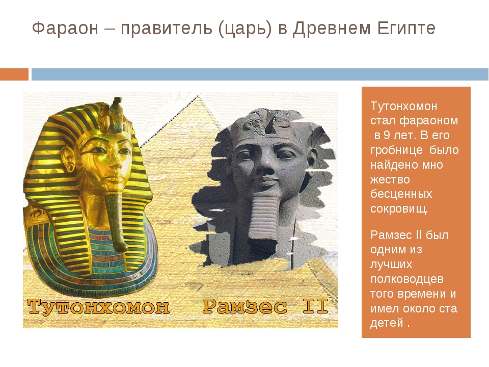Фараон – правитель (царь) в Древнем Египте Тутонхомон стал фараоном в 9 лет....