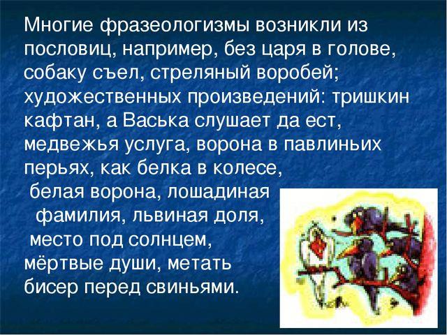 Многие фразеологизмы возникли из пословиц, например, без царя в голове, собак...