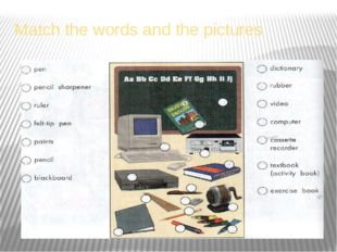 Match the words and the pictures