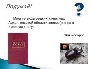 Многие виды редких животных Архангельской области занесе(н,нн)ы в Красную кн