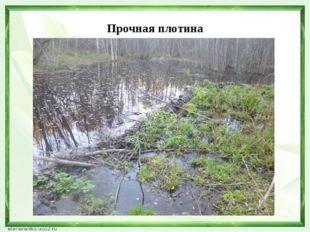 Прочная плотина