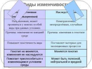 Виды изменчивости Ненаследственная (модификационная) Наследственная Направлен