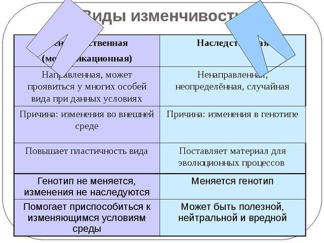 Виды изменчивости Ненаследственная (модификационная) Наследственная Направлен...