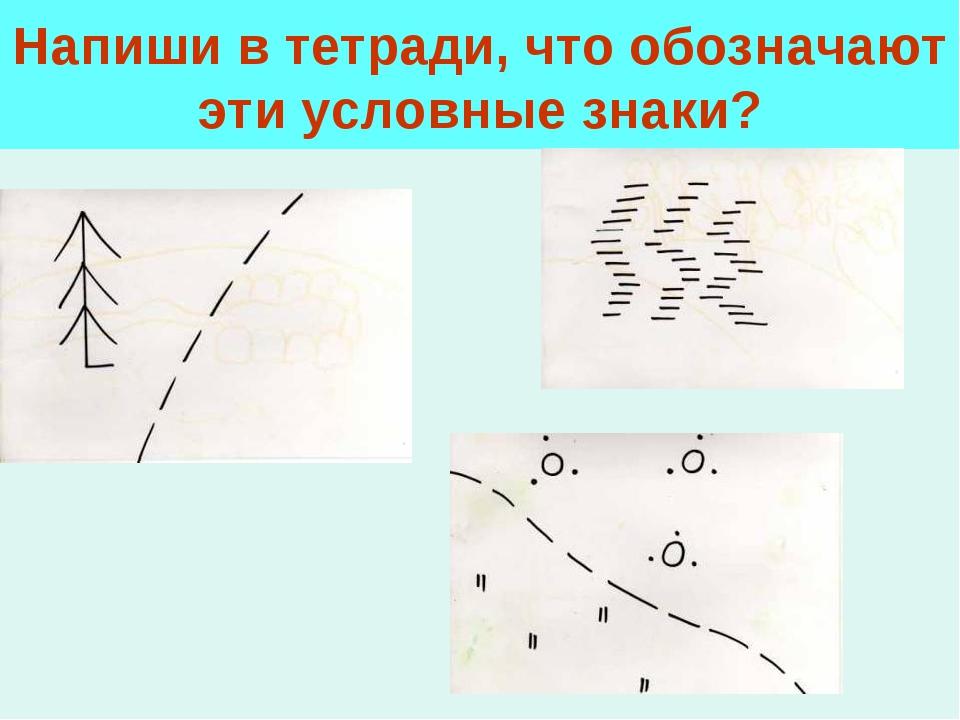 Напиши в тетради, что обозначают эти условные знаки?