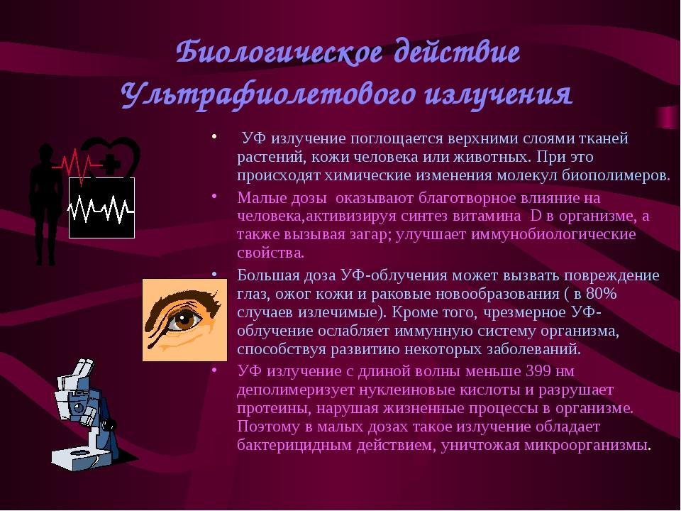 Биологическое действие Ультрафиолетового излучения УФ излучение поглощается в...