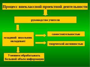 Процесс внеклассной проектной деятельности руководство учителя младший школьн
