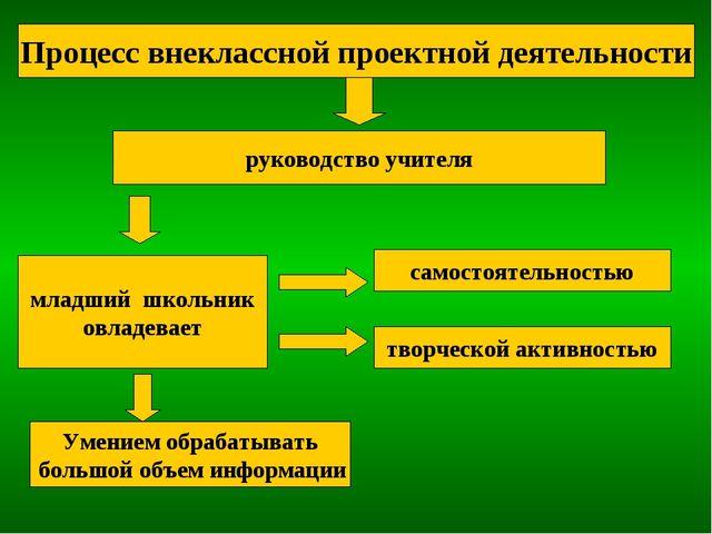 Процесс внеклассной проектной деятельности руководство учителя младший школьн...