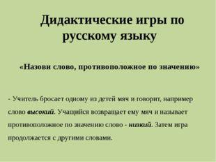 Дидактические игры по русскому языку   Дидактические игры по русскому языку