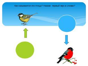 Как называются эти птицы? Назови первый звук в словах?
