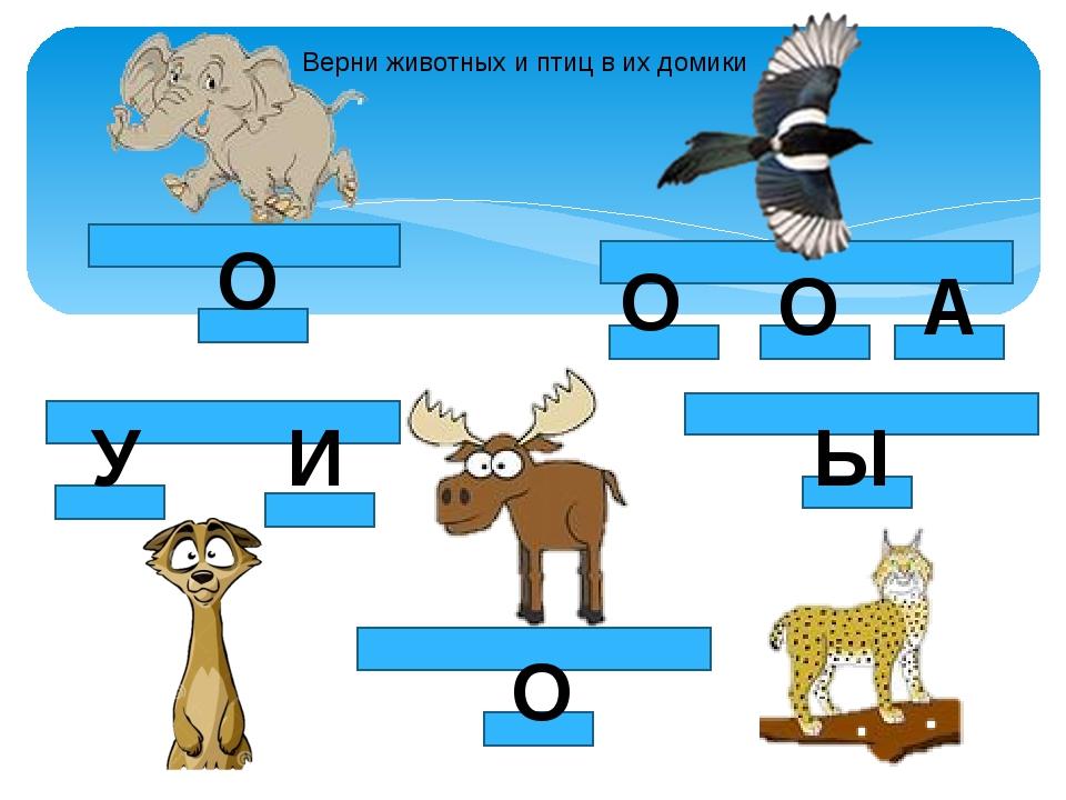 О О У И О О А Ы Верни животных и птиц в их домики