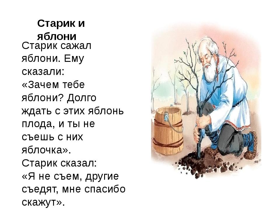 Старик сажал яблони. Ему сказали: «Зачем тебе яблони? Долго ждать с этих ябл...