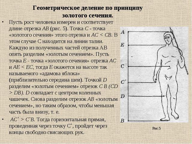 Пусть рост человека измерен и соответствует длине отрезка АВ (рис. 5). Точка...
