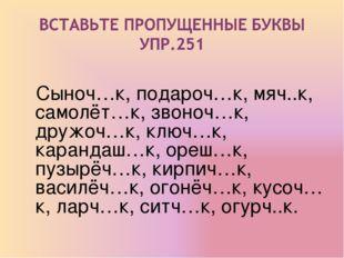 Сыноч…к, подароч…к, мяч..к, самолёт…к, звоноч…к, дружоч…к, ключ…к, карандаш…
