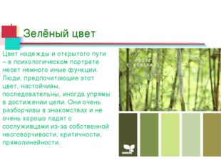 Зелёный цвет Цвет надежды и открытого пути – в психологическом портрете несет