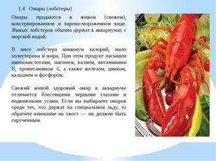 1.4 Омары (лобстеры) Омары продаются в живом (свежем), консервированном и вар