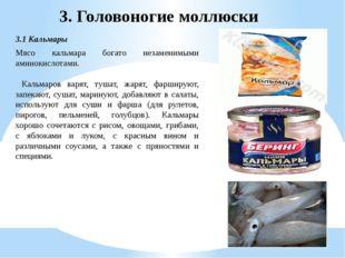 3.1 Кальмары 3. Головоногие моллюски Мясо кальмара богато незаменимыми аминок